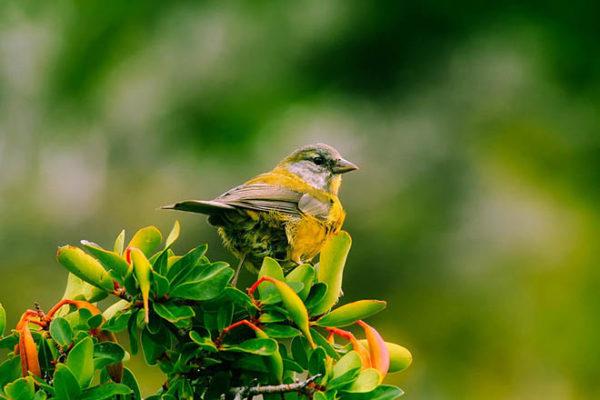 Красивые фото природы - пейзажи, картинки, удивительные, прекрасные 5