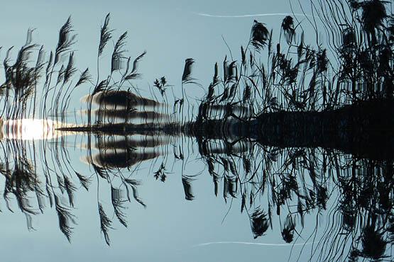 Скачать красивые картинки природы на компьютер - интересные, удивительные 6