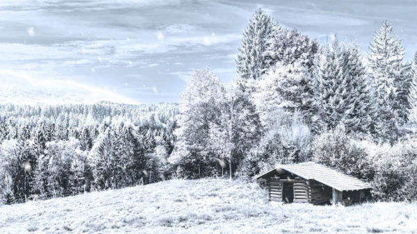 Красивые и прикольные зимние картинки - красочные и удивительные 11