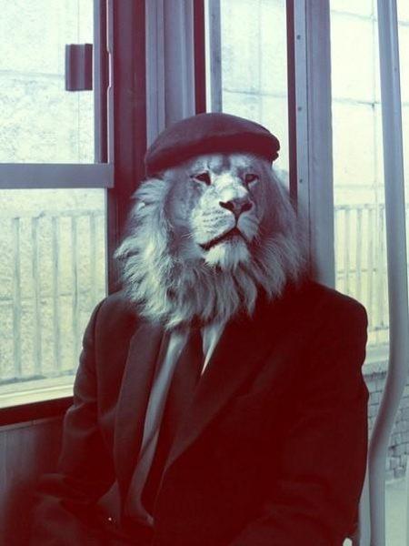 Фото на аву в Одноклассники - красивые, прикольные и со смыслом 11