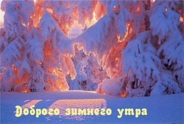 С Добрым зимним утром - скачать бесплатно прикольные картинки 10