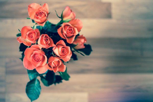 Красивые и прикольные картинки роз - удивительная подборка 7
