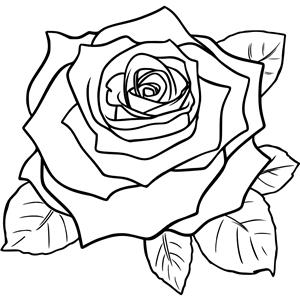 Красивые рисунки карандашом для срисовки - лучшая подборочка 5