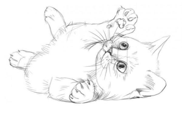 Красивые рисунки карандашом для срисовки - лучшая подборочка 7