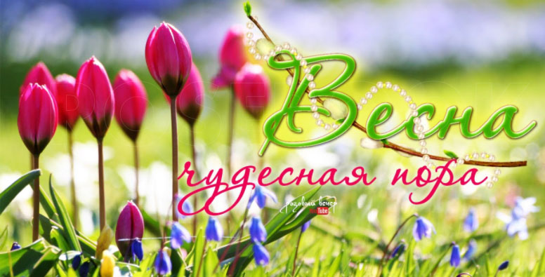Весна пришла картинки с надписями - самые красивые и прикольные 8