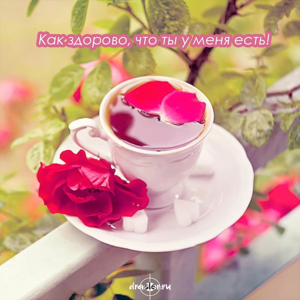 Доброе-утро-милые-картинки-и-открытки---приятные-и-нежные-11