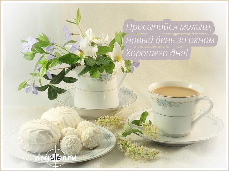 Доброе-утро-милые-картинки-и-открытки---приятные-и-нежные-15