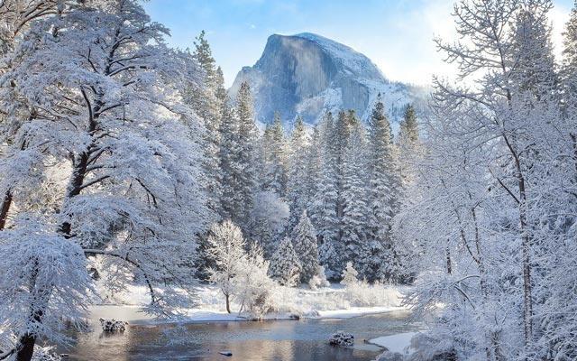 Красивые-зимние-картинки-природы-и-растений---лучшие-изображения-7