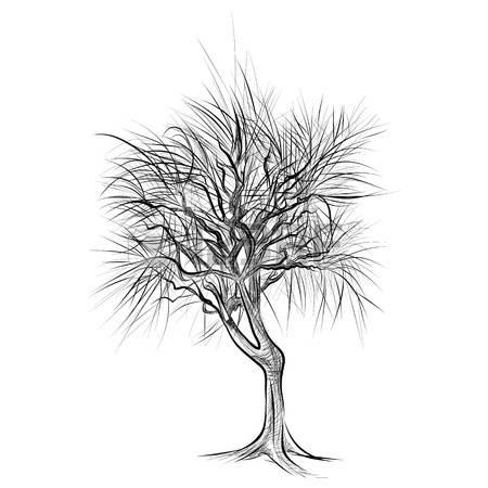 Красивые картинки дерево без листьев - скачать бесплатно для детей 2