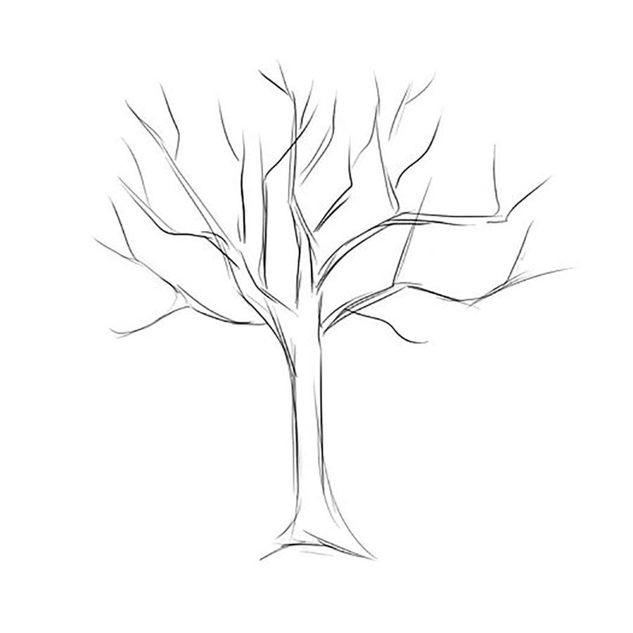Красивые картинки дерево без листьев - скачать бесплатно для детей 8