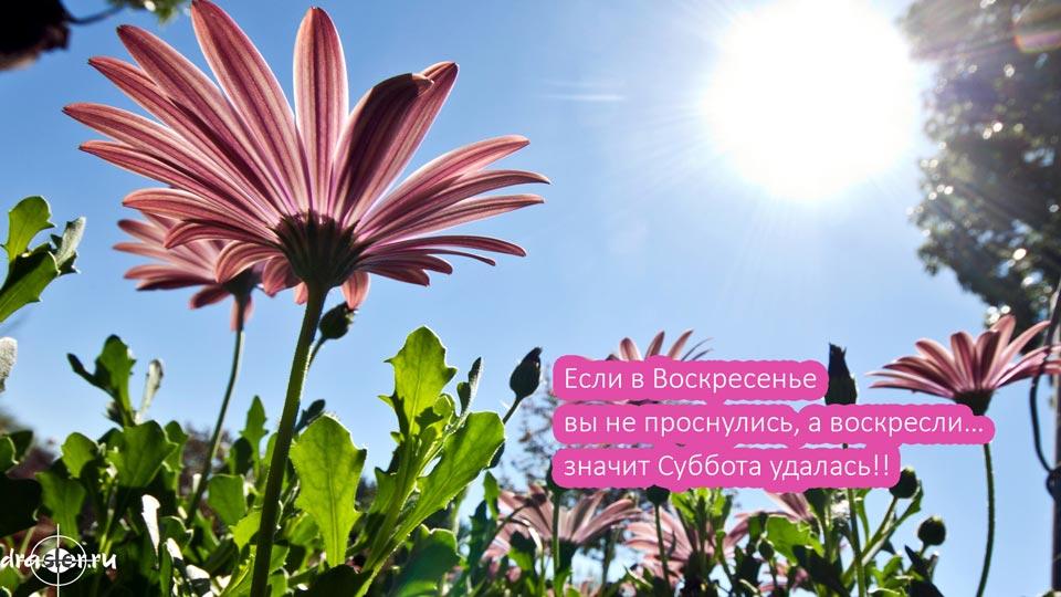 Красивые-картинки-с-воскресеньем---скачать-или-смотреть-онлайн-8