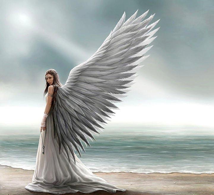 Крылья-картинки-красивые-и-прикольные---скачать,-смотреть-онлайн-10