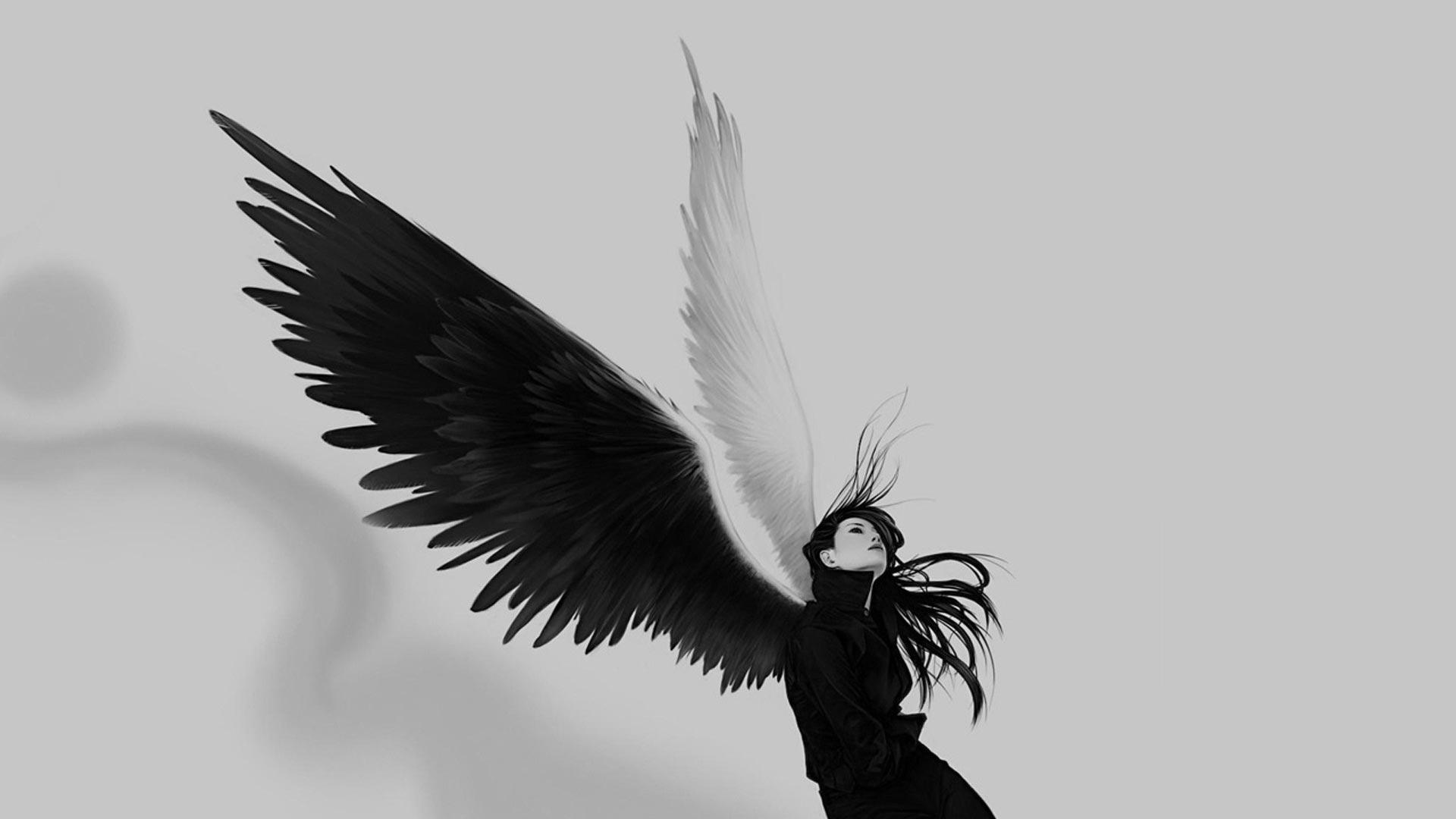 Крылья-картинки-красивые-и-прикольные---скачать,-смотреть-онлайн-3