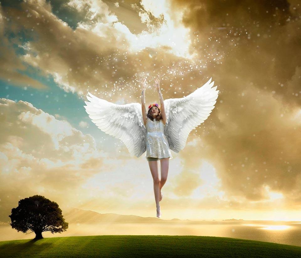 Крылья-картинки-красивые-и-прикольные---скачать,-смотреть-онлайн-4