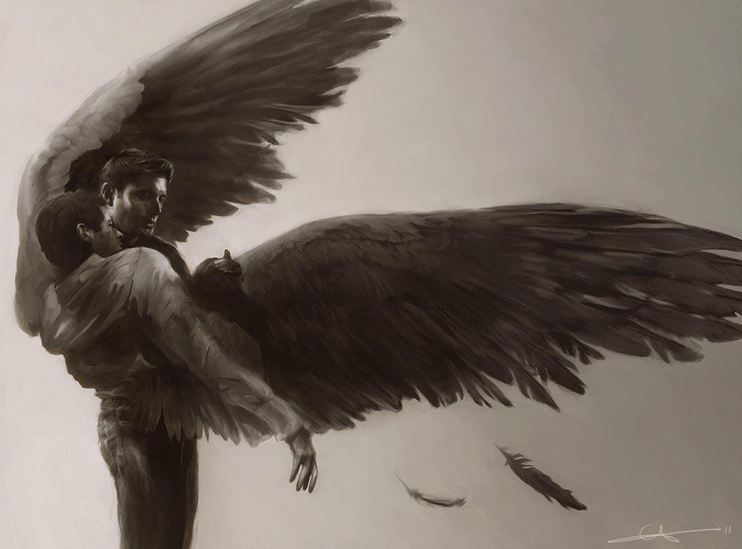 Крылья-картинки-красивые-и-прикольные---скачать,-смотреть-онлайн-7