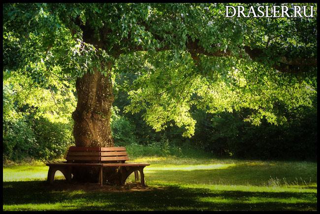 Необходимый инвентарь для активного отдыха на природе - что взять с собой 2