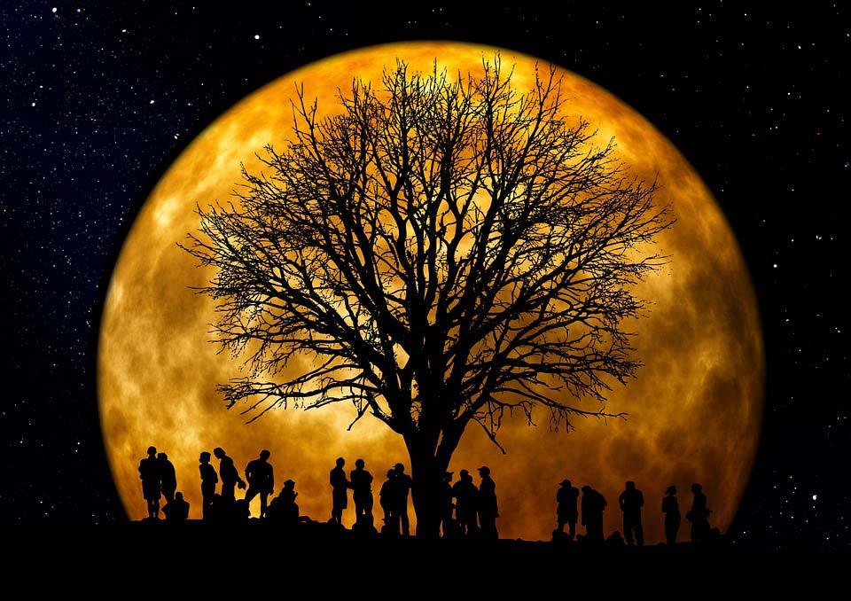 Ночь-картинки-красивые-и-интересные---отличная-нарезка-9