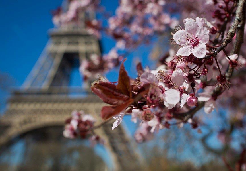 Очень-красивые-картинки-весны---смотреть-или-скачать-бесплатно-5