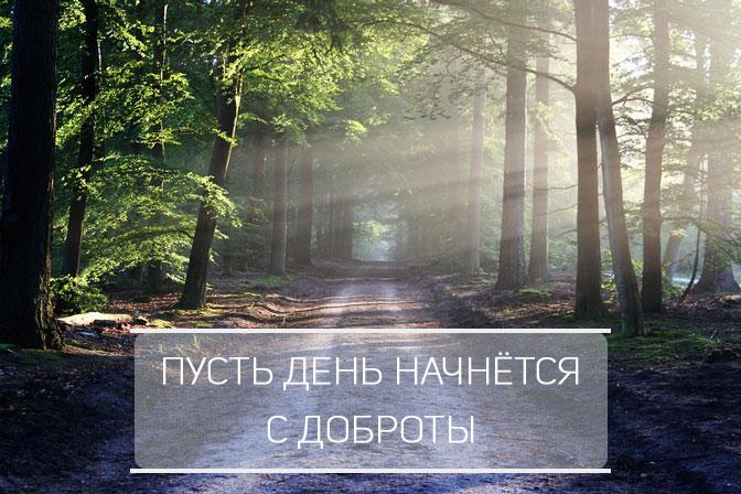 Скачать-бесплатно-картинки-с-добрым-утром---приятные-и-красивые-3