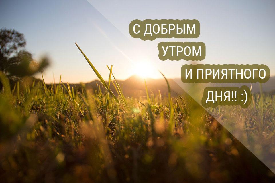 Скачать-бесплатно-картинки-с-добрым-утром---приятные-и-красивые-4