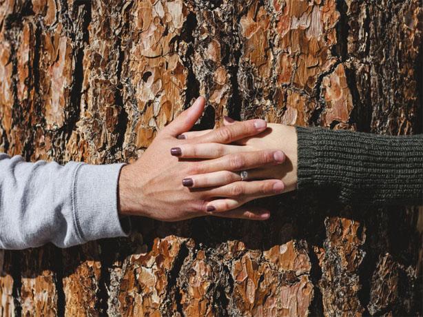 Скачать картинки руки влюбленных или руки любимых - очень красивые 1