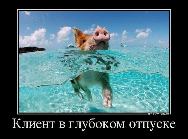 Смешные-картинки-и-фото-про-отпуск---самые-прикольные-5