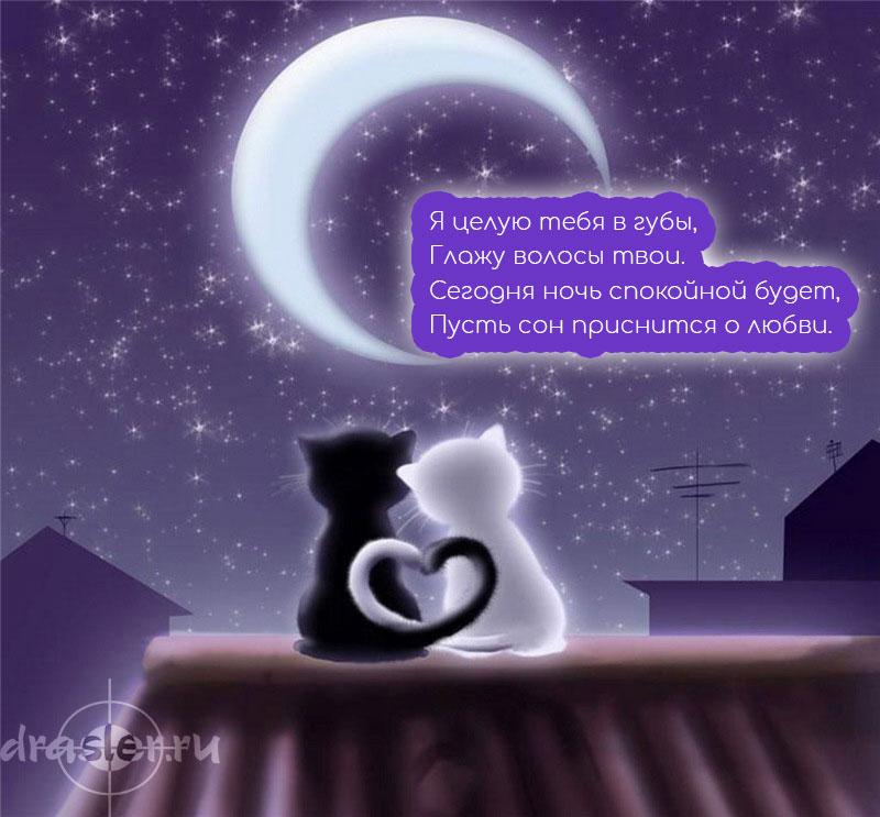 Спокойной-ночи-картинки-с-надписями---красивые-и-приятные-6