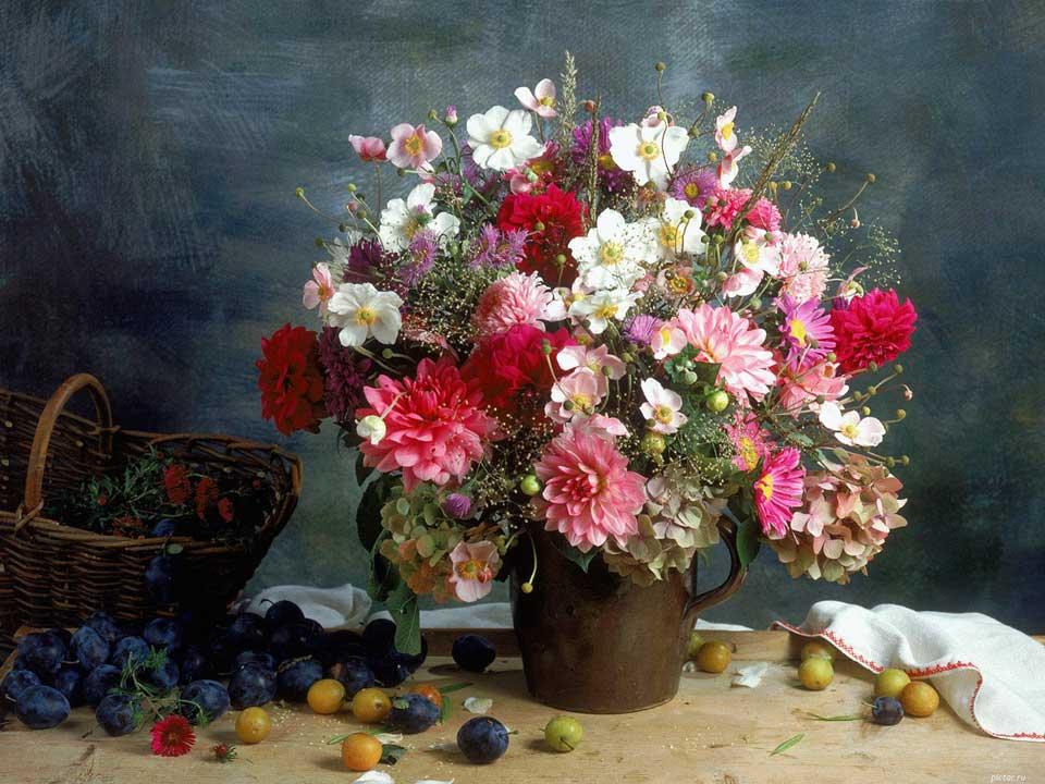 Цветочки-картинки-прикольные-и-красивые---интересная-сборка-4