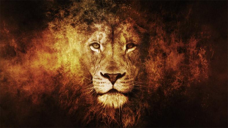 Прикольные и красивые картинки льва и львов - сборка изображений 10