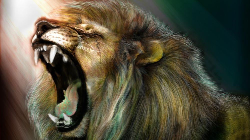 Прикольные и красивые картинки льва и львов - сборка изображений 12