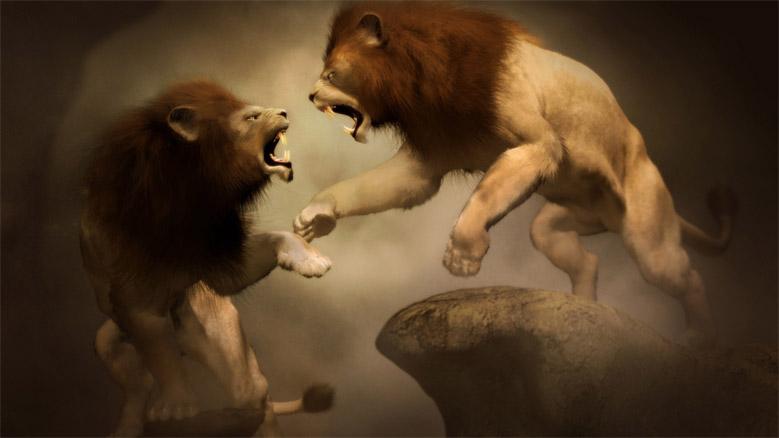Прикольные и красивые картинки льва и львов - сборка изображений 13