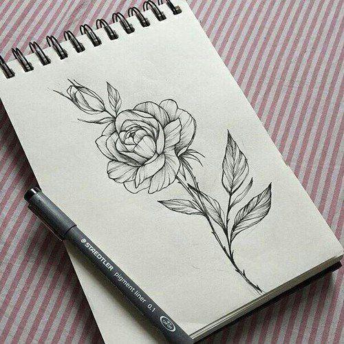 Цветные рисунки цветов для срисовки - красивая подборка 11