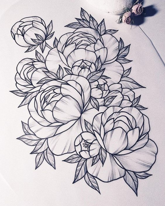 Цветные рисунки цветов для срисовки - красивая подборка 14