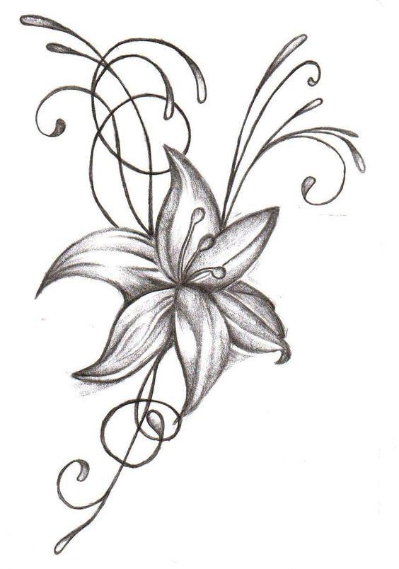 Цветные рисунки цветов для срисовки - красивая подборка 15