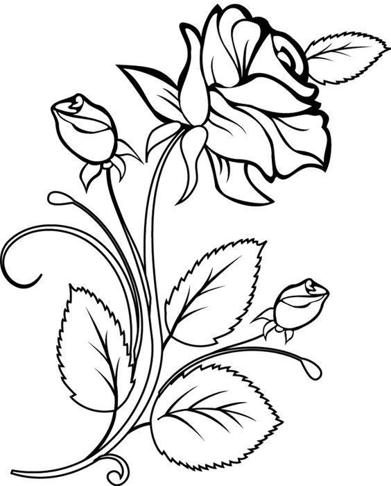 Цветные рисунки цветов для срисовки - красивая подборка 6