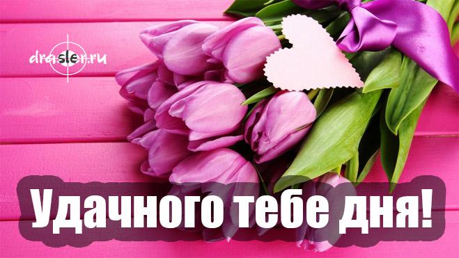 Красивые открытки с пожеланиями удачи на весь день - подборка 1