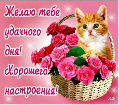 Красивые открытки с пожеланиями удачи на весь день - подборка 7