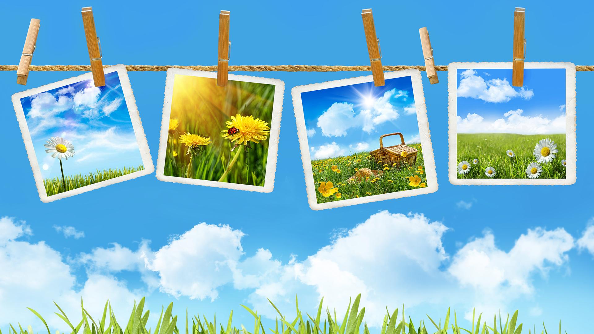 Красивые картинки на рабочий стол про лето и его пейзажи природы 14
