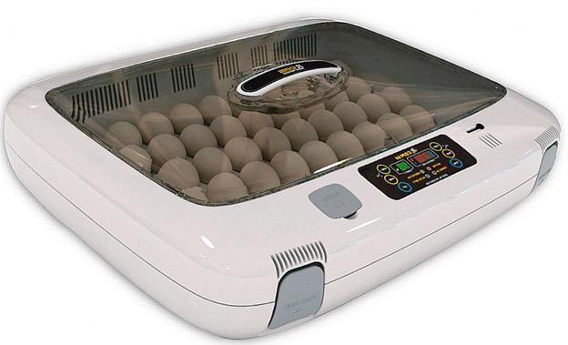 Сколько стоит инкубатор для куриных яиц Факторы влияния на цену 1