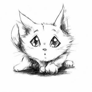 Чёрно-белые рисунки и картинки кошек, котиков - коллекция 1