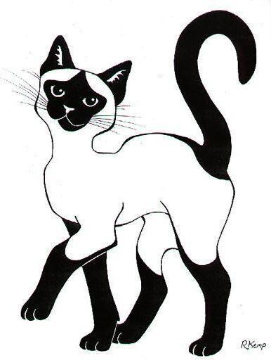 Чёрно-белые рисунки и картинки кошек, котиков - коллекция 10