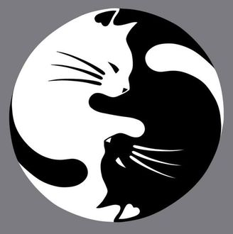 Чёрно-белые рисунки и картинки кошек, котиков - коллекция 3