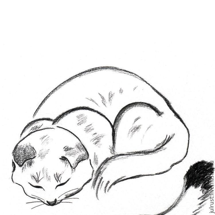 Чёрно-белые рисунки и картинки кошек, котиков - коллекция 8