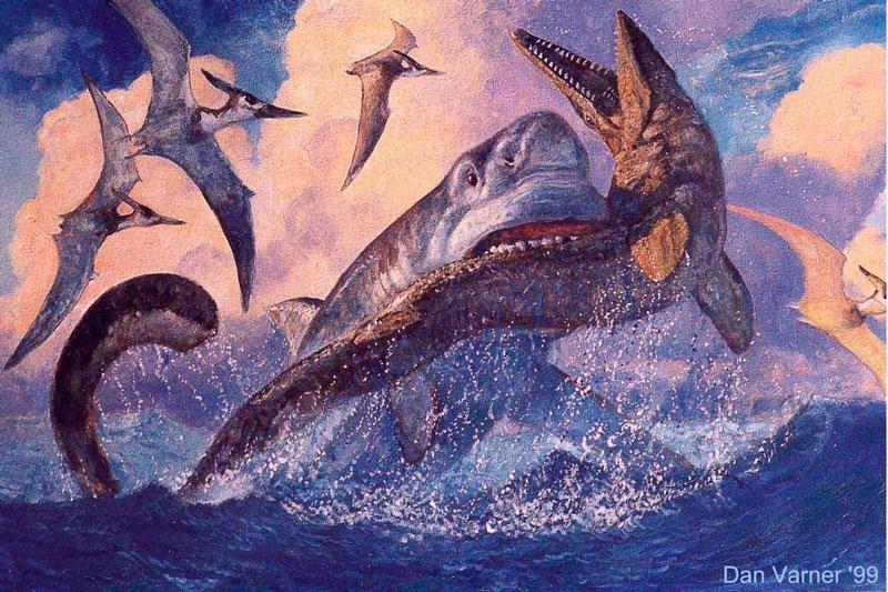 Невероятные картинки гигантской вымершей акулы Мегалодон - подборка