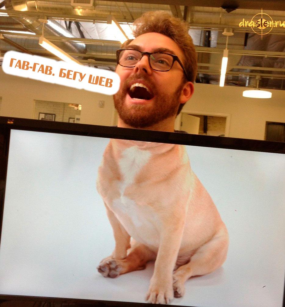 Смешные и забавные картинки про работу в офисе - подборка 2018 6