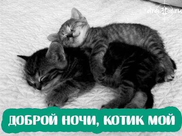 """Красивые и приятные картинки пожелания """"Милой ночи"""" - подборка 1"""