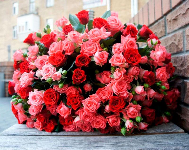 Самые красивые и удивительные букеты роз - 25 фото 3