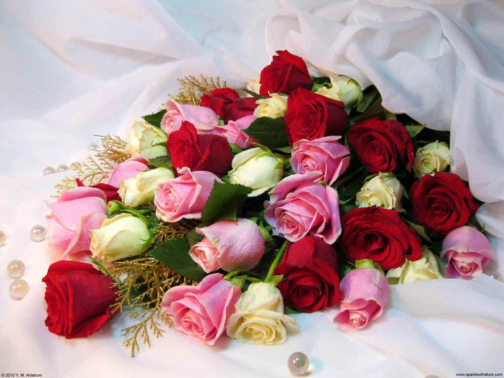 Самые красивые и удивительные букеты роз - 25 фото 7