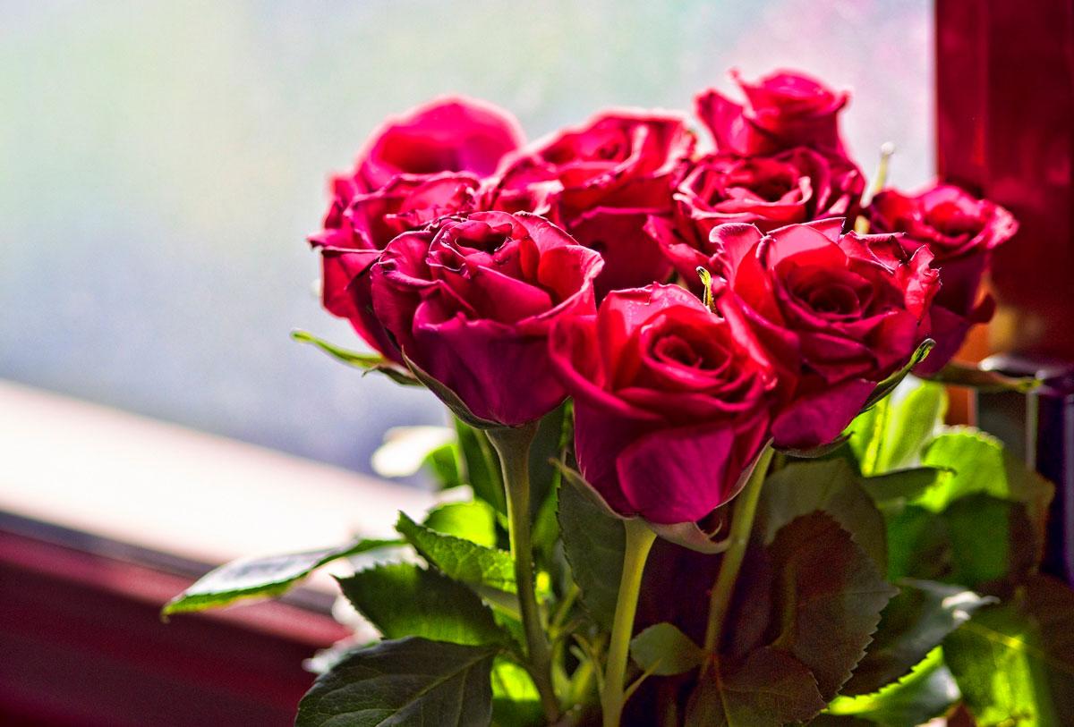 Самые красивые и удивительные букеты роз - 25 фото 5