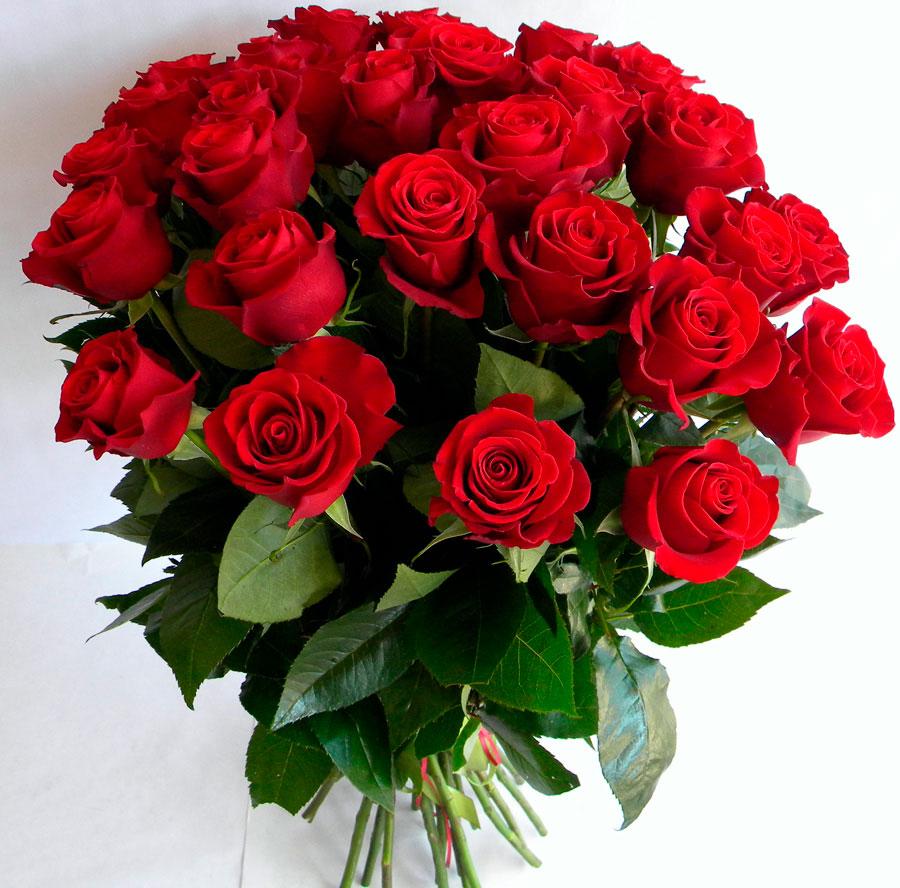 Самые красивые и удивительные букеты роз - 25 фото 13
